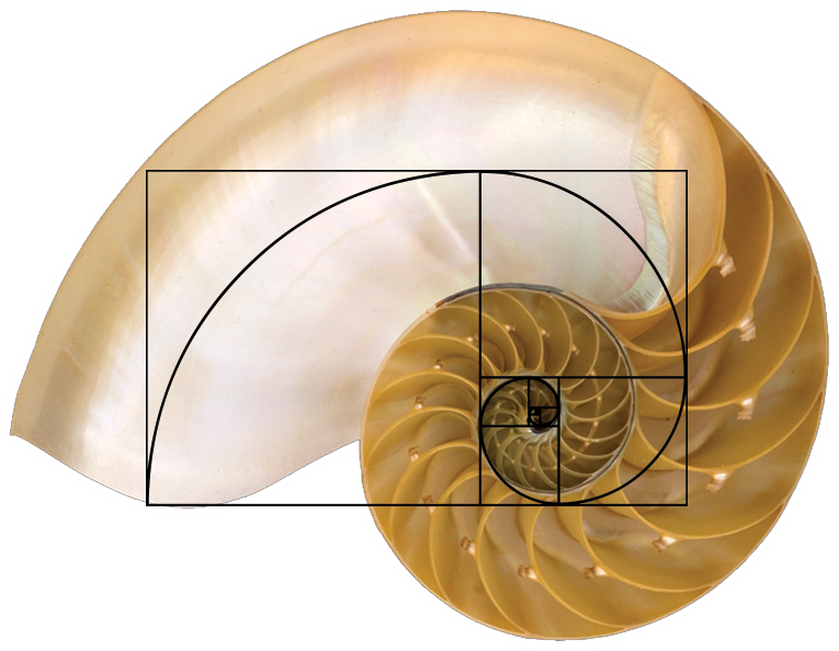 golden-ratio